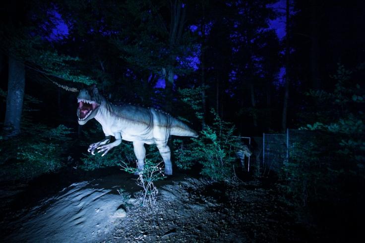 Dino night 1