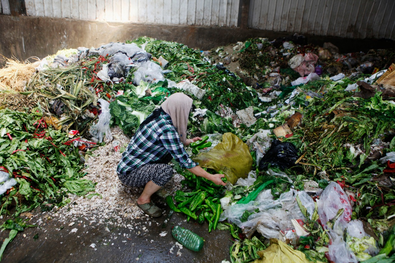 A woman picks up vegetables discarded by food vendors at a garbage dump site of a wholesale market in Xi'an, Shaanxi province July 27, 2014. About 60 tonnes of vegetables are discarded every day in the market due to damages mainly caused by hot weather. Many residents come to pick them up at a garbage dump site to eat or feed their livestock, local media reported. Picture taken July 27, 2014. REUTERS/Stringer (CHINA - Tags: SOCIETY FOOD) CHINA OUT. NO COMMERCIAL OR EDITORIAL SALES IN CHINA - RTR40BSB