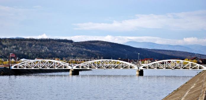 podul ferdinand cel care a stat marturie luptelor din 1916