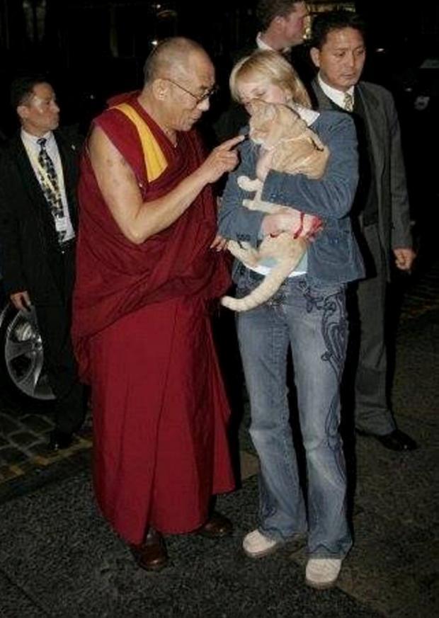 dalai lama binecuvanteaza o pisica